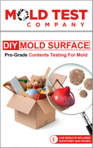 DIY Surface Mold Test Kit